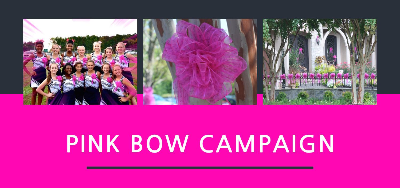 Pink Bow Campaign Susan G Komen Charlotte